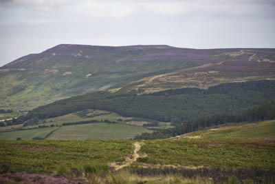 Carlton Bank, North York Moors National Park