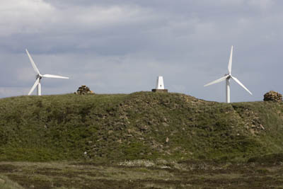 The Fly Flat trig stands on a knoll next to the windfarm