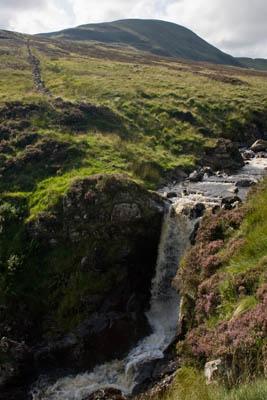 White Coomb, Dumfriesshires top peak