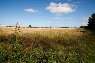 The arable fields of the Vale of Mowbray