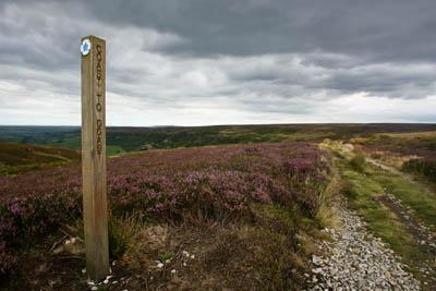 The Coast-to-Coast path on Glaisdale Moor