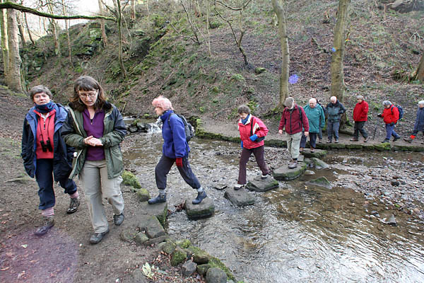 Kate Berridge leads the group through Nutclough Woods