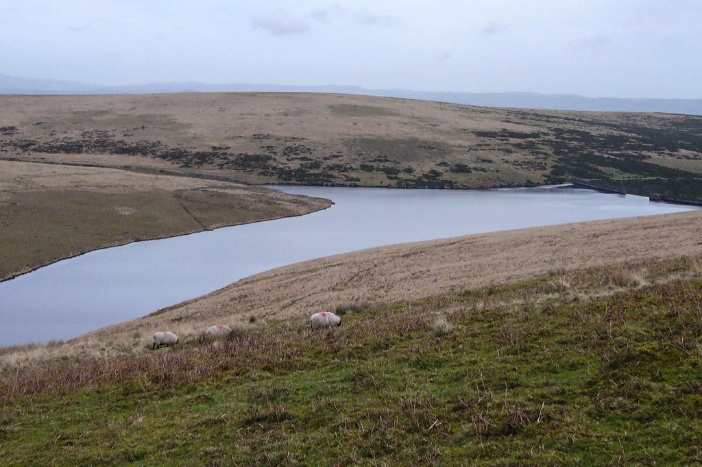 The group got lost near Avon Dam Reservoir on Dartmoor. Photo: Herby CC-BY-SA-4.0