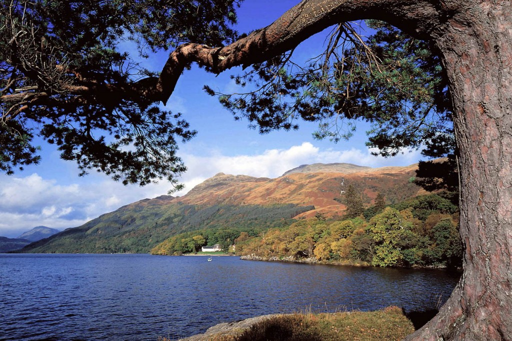Walkers can join the event to make the ascent of Ben Lomond by night
