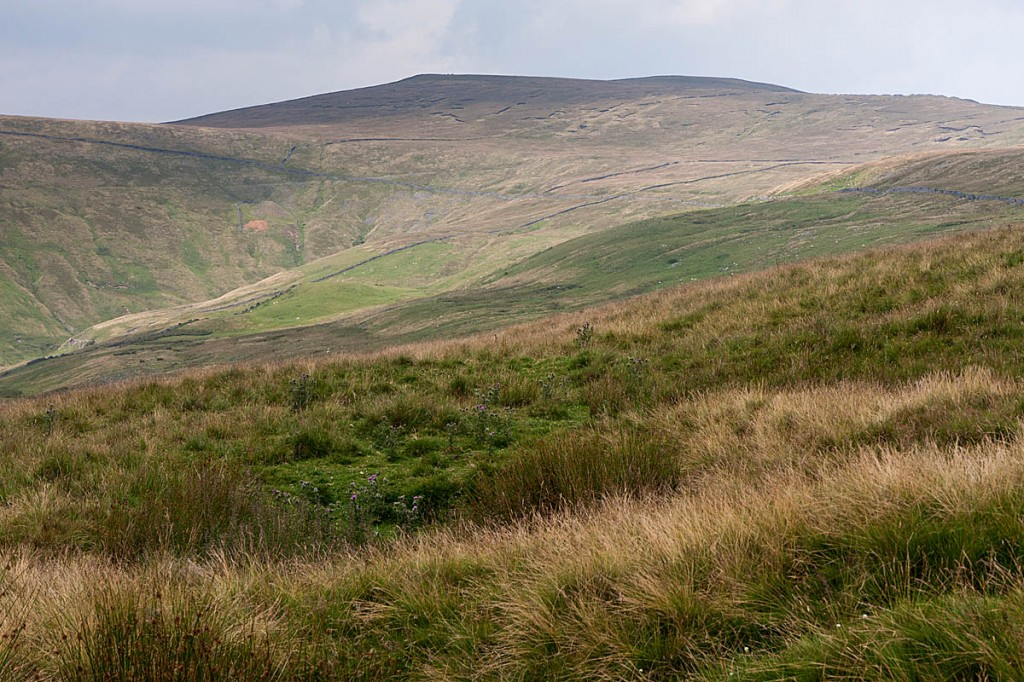 Buckden Pike, one of the hills on the challenge route. Photo: Bob Smith/grough