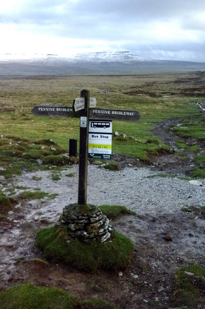 The new bus stop on the flanks of Ingleborough at Sulber crossroads. Photo: CRO