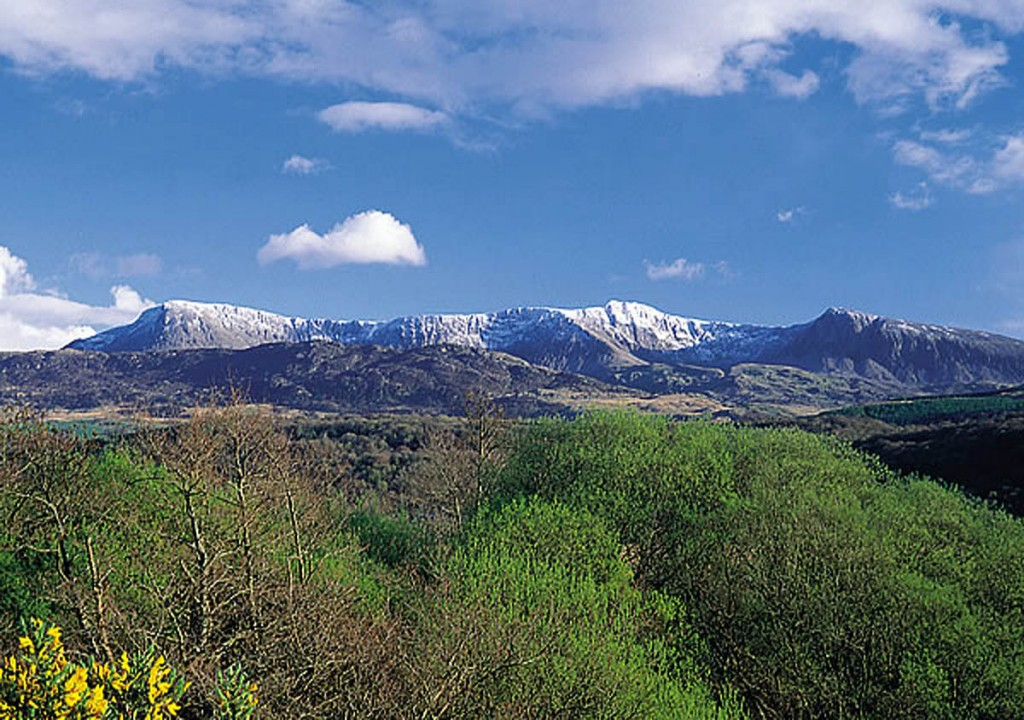 Cadair, or Cader Idris