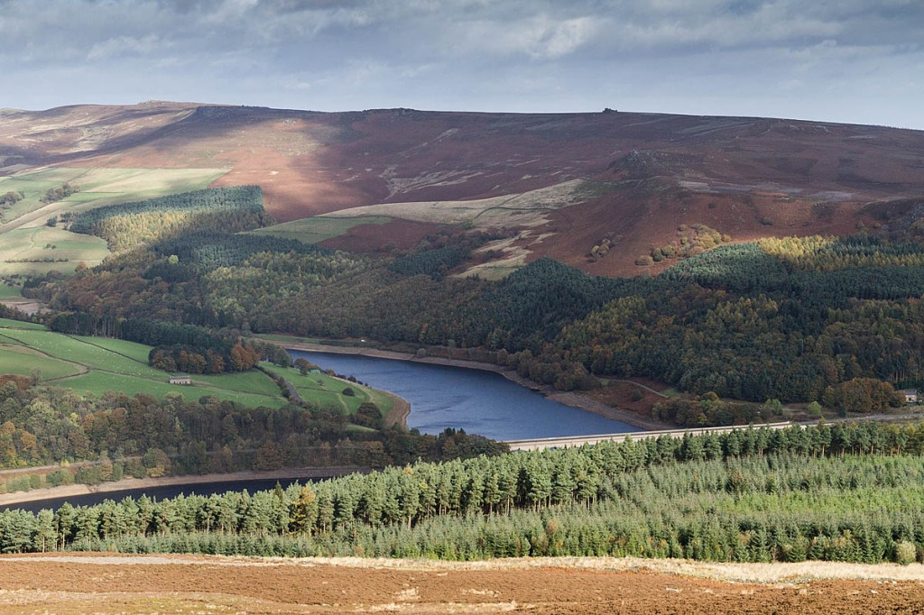 The main was walking on Derwent Moors above Ladybower Reservoir. Photo: Bob Smith/grough
