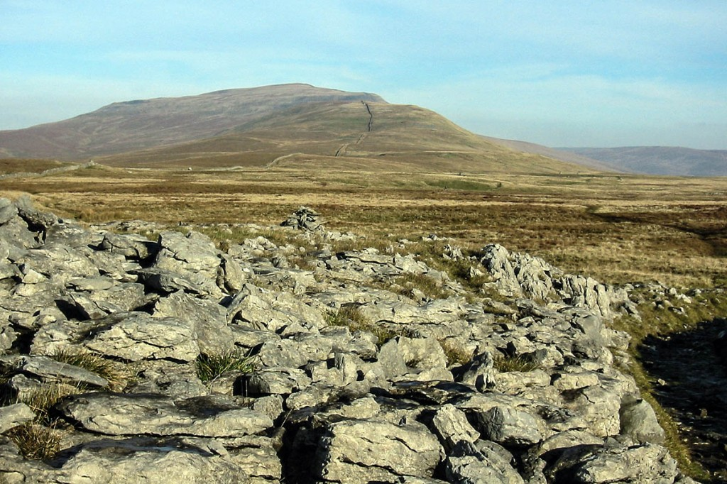 The search took place on Ewes Top Moss on the ridge leading to Whernside in the distance. Photo: Bob Smith/grough