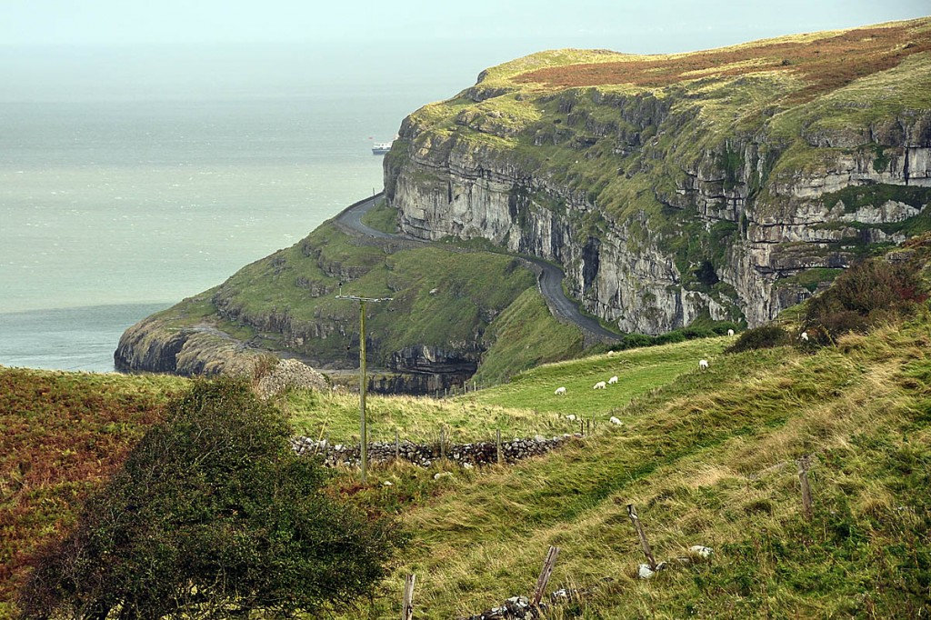 The Explorer Scout fell 80m on the Great Orme, Llandudno. Photo: Nilfanion CC-BY-SA-3.0