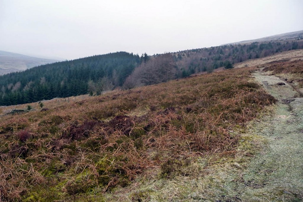 The couple got lost while walking in the Grwyne Fawr area. Photo: Jeremy Bolwell CC-BY-SA-2.0