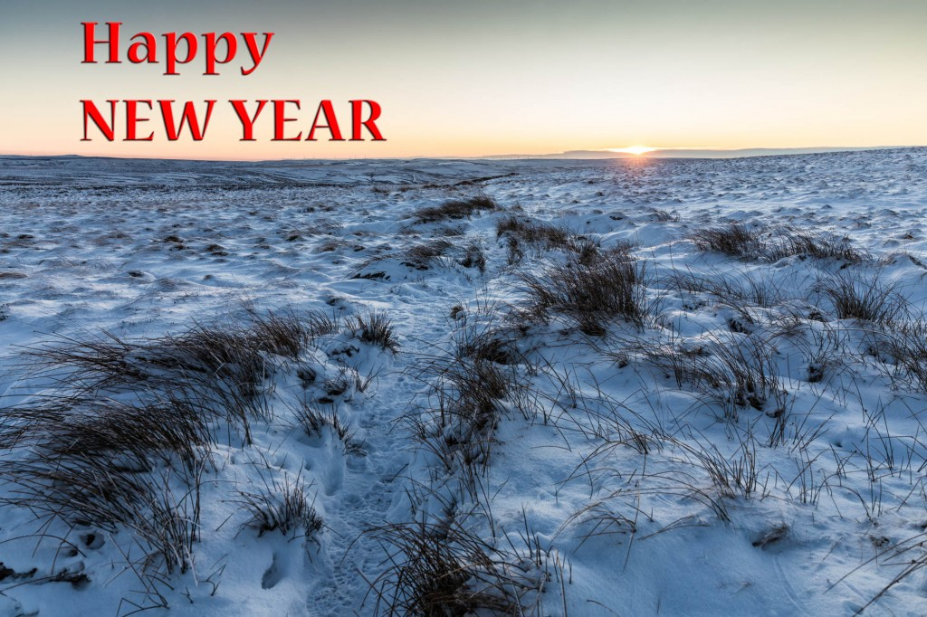 Happy New Year from grough