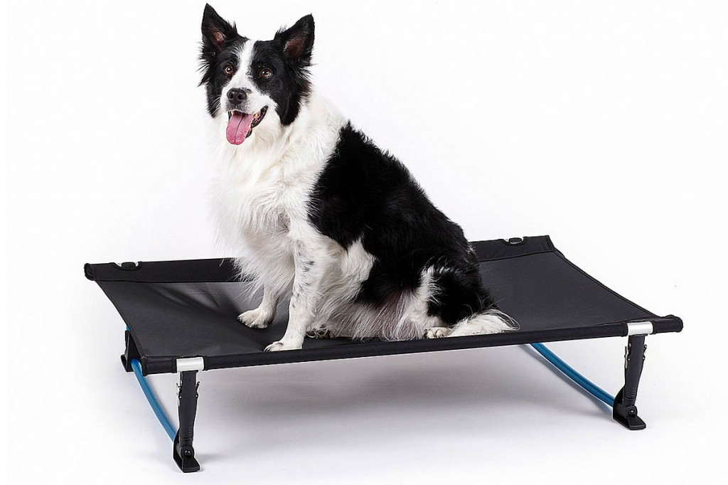 The Helinox Elevated Dog Cot large version, with test model