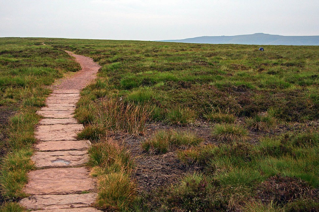 The flagged and maintained path leading to the northern high-point. Photo: Myrddyn Phillips
