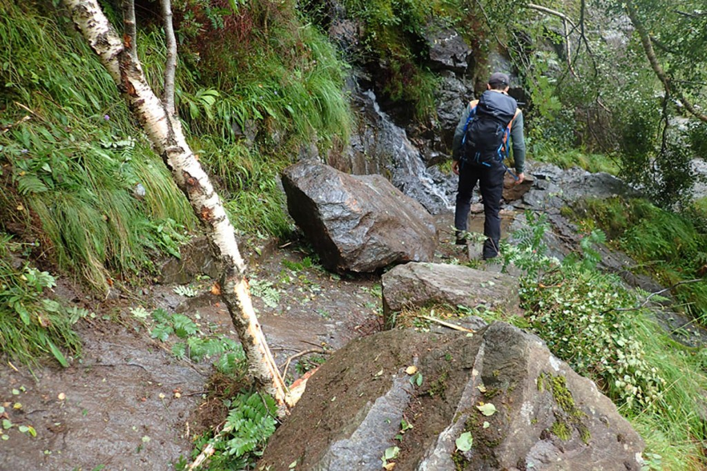 Boulders and fallen trees lie on the Steall path. Photo: John Muir Trust
