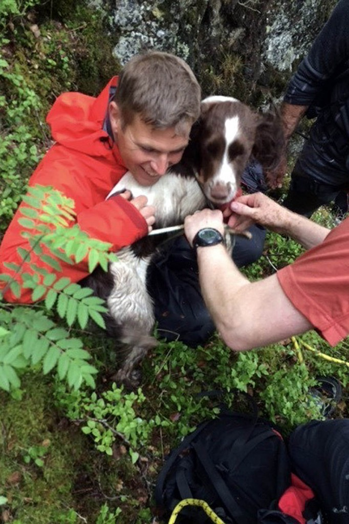 Rocky was found uninjured. Photo: Keswick MRT