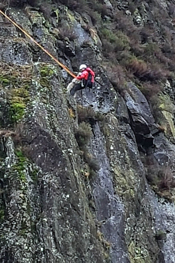 A team member rescues the sheep from its precarious position. Photo: Keswick MRT