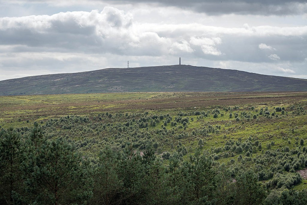 The land at Langholm Moor will be turned into a nature reserve. Photo: David Lintern/John Muir Trust