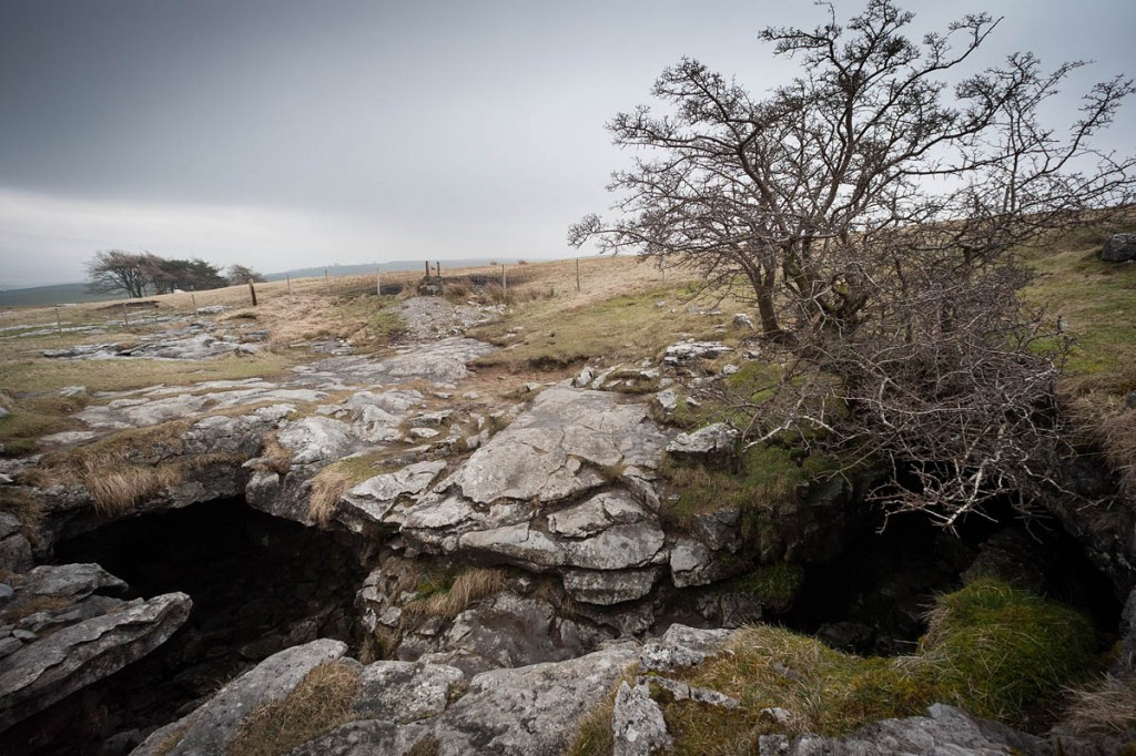 The entrance to Long Churn Cave, near Selside. Photo: Bob Smith/grough