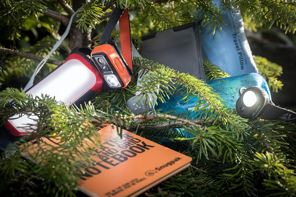 What goodies will your outdoor fan find under the Christmas tree? Photo: Bob Smith/grough