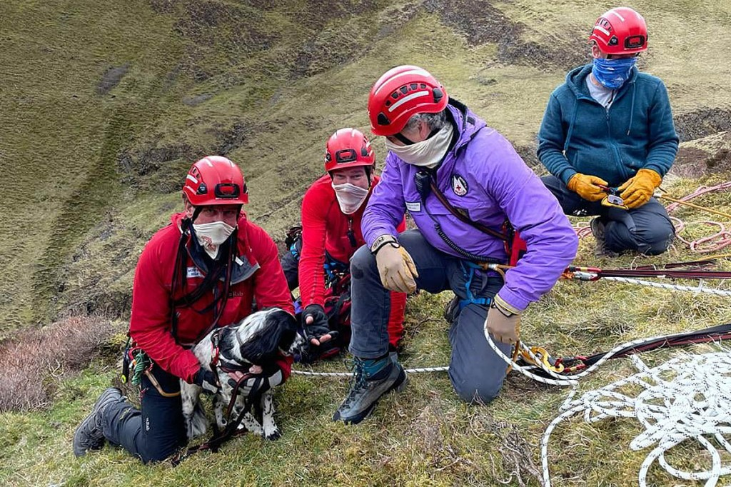 Team members with the rescued dog. Photo: Moffat MRT