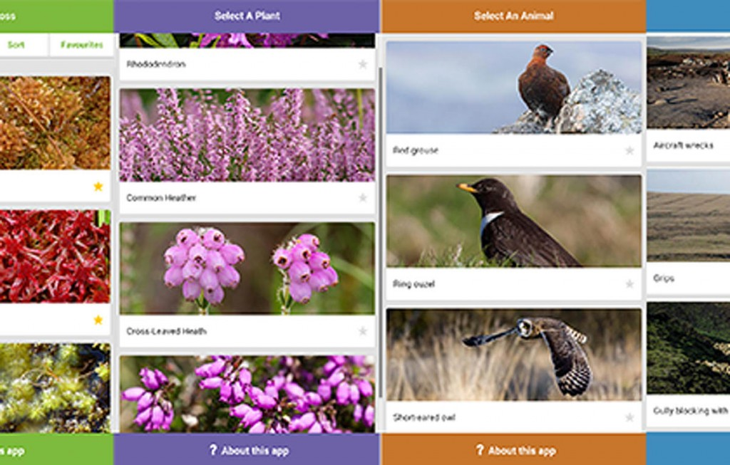 The apps detail flora and fauna of the moors