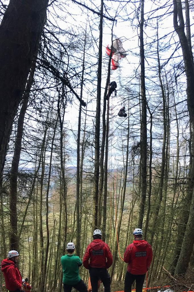 The rescue scene in woods near Llangollen. Photo: Newsar