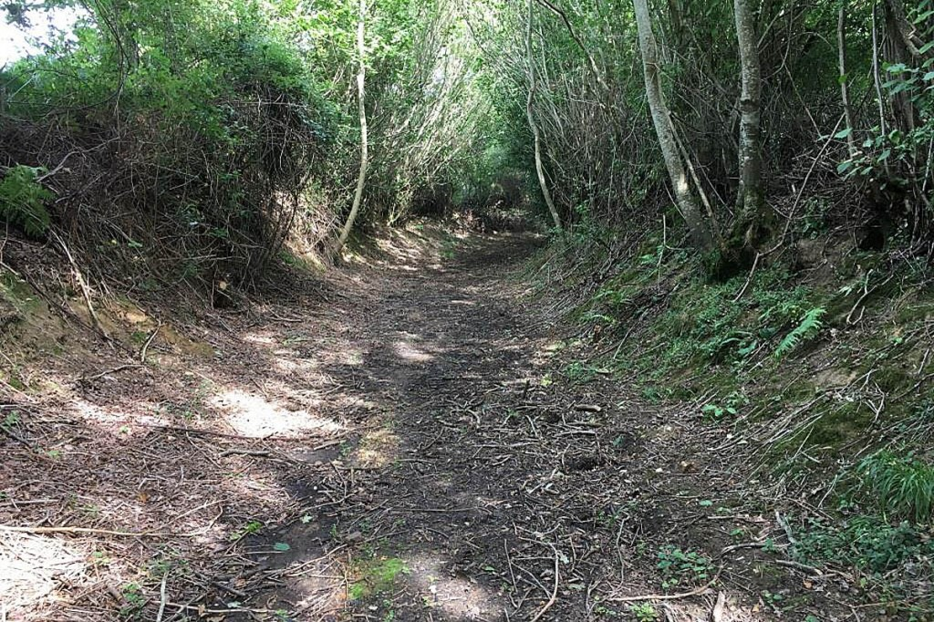 Colebrook Lane, the unsurfaced road the society said was at risk. Photo: OSS