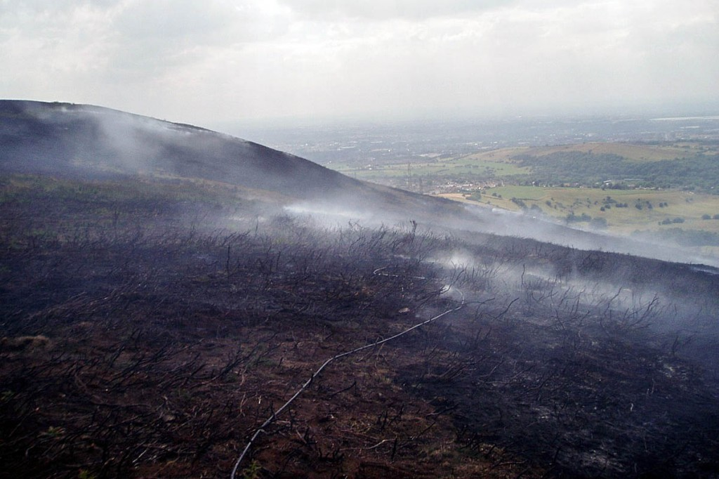 Wildfires have a devastating effect on the moorland environment