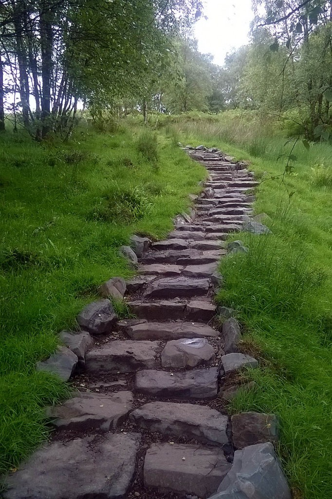The path has been upgraded to cope with increased visitor numbers and weather erosion. Photo: Sven Rasmussen