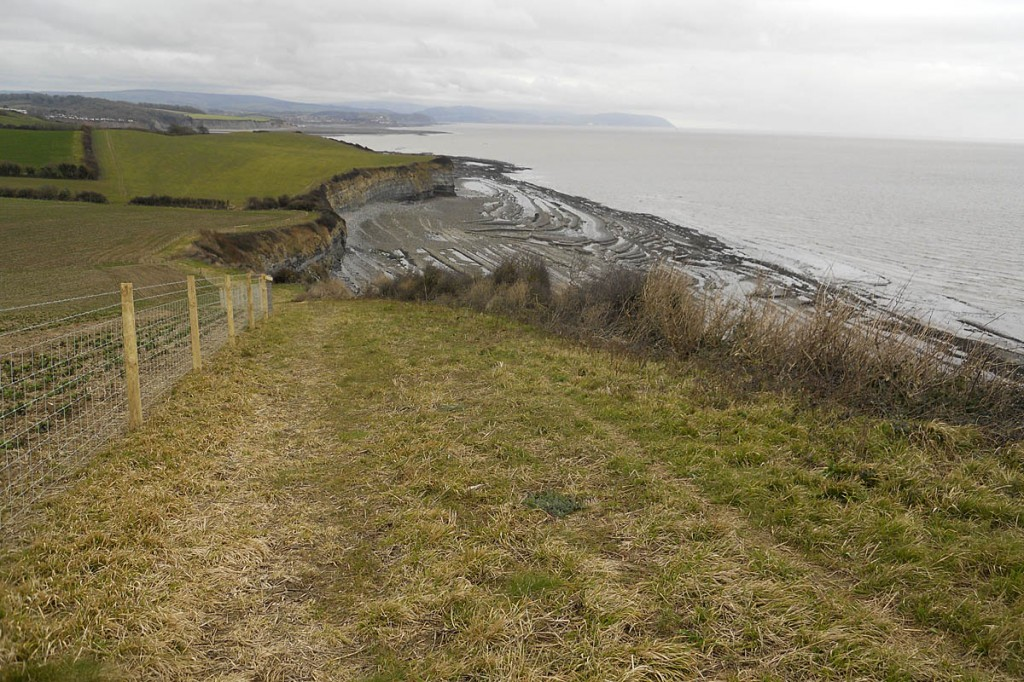 The path includes the section from David's Way to St Audrie's Bay. Photo: Sarah Littler/Somerset County Council