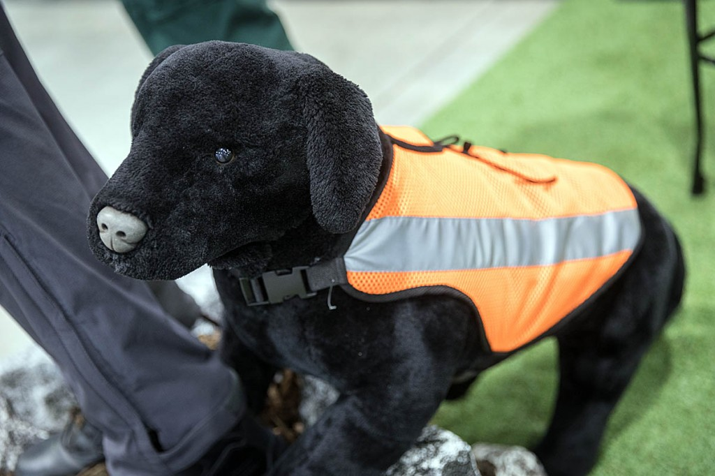 Four-legged outdoor adventurers were also catered for on some stands. Photo: Bob Smith/grough