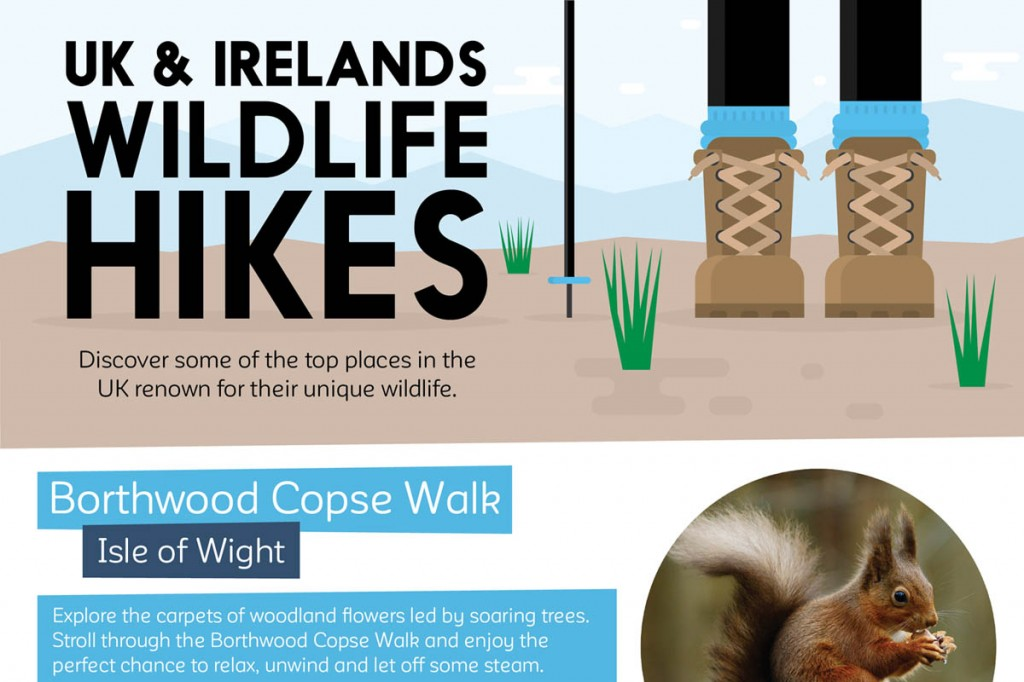 The UK and Ireland's Top Wildlife Hikes
