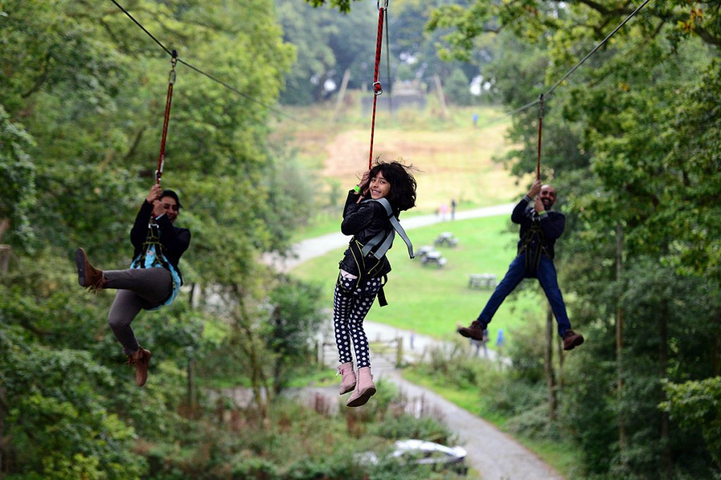 Users on a triple zipwire. Photo: Treetop Trek