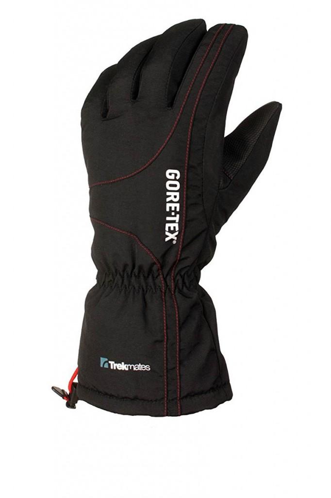 Trekmates Chamonix Glove GTX