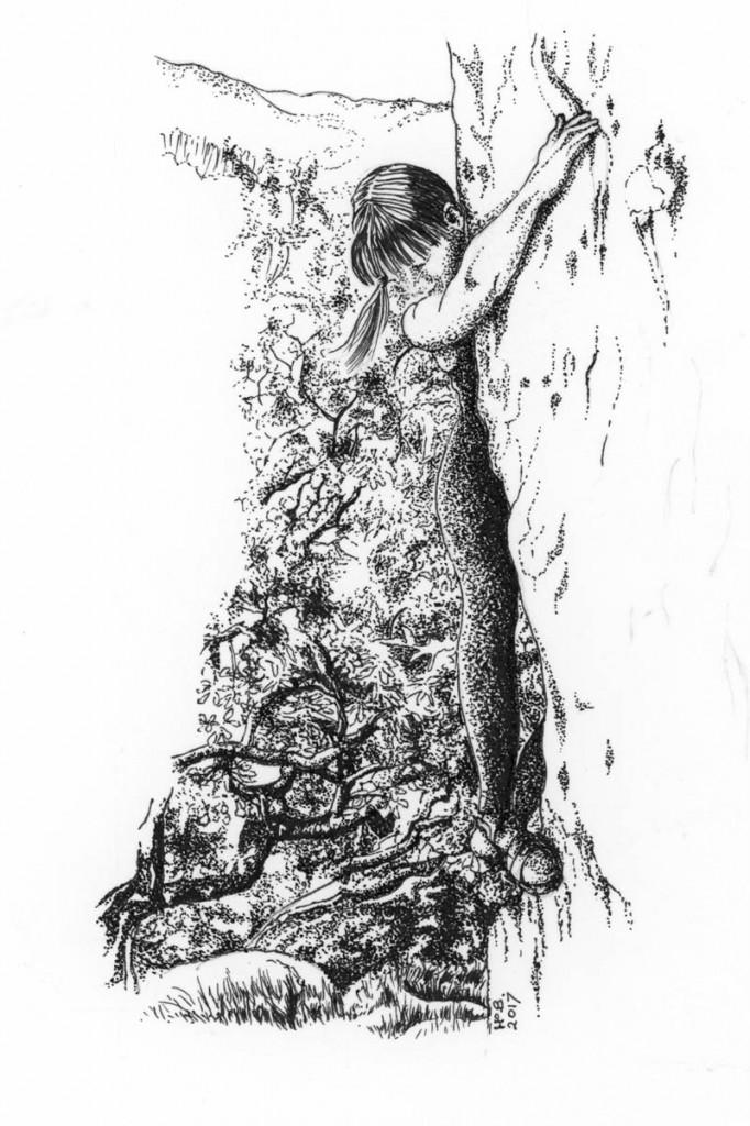 A climber. Picture: Hazel Barnard