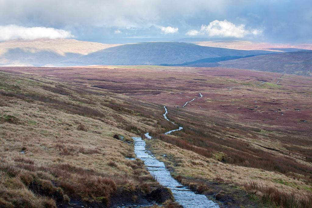 The flanks of Whernside, looking towards Grain Head. Photo: Bob Smith/grough