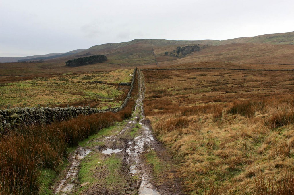 The traps were set on remote moorland on Widdale Fell. Photo: Chris Heaton CC-BY-SA-2.0