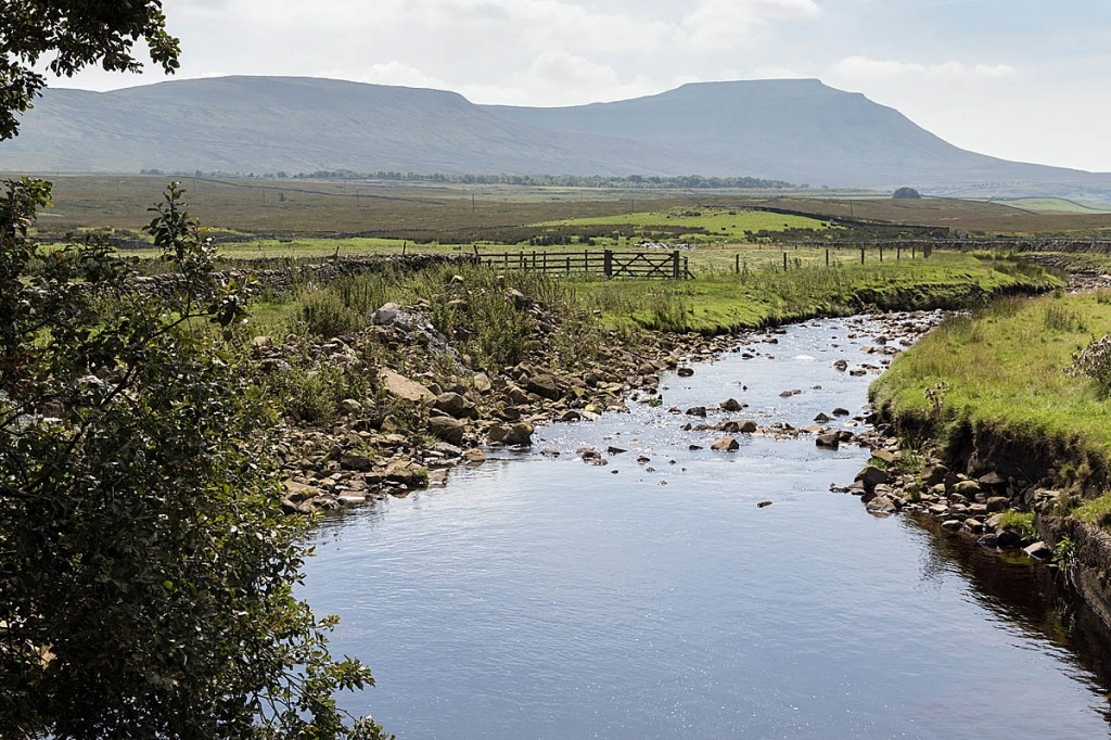 Winterscales Beck near Ribblehead, with Ingleborough in the distance. Photo: Bob Smith/grough