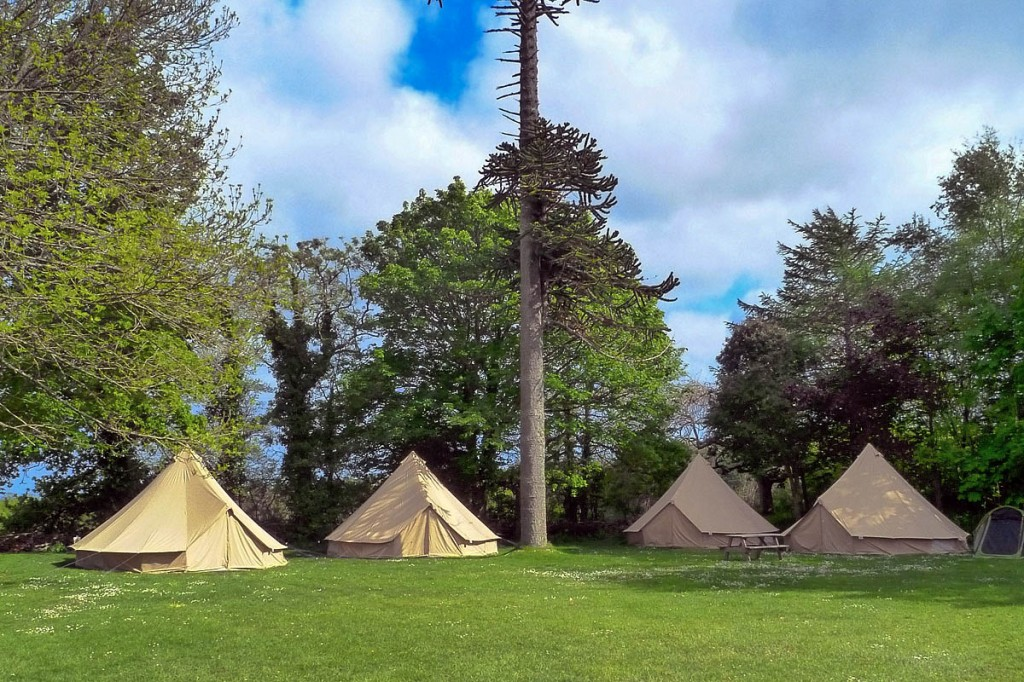 Dogs are now allowed at YHA England and Wales sites with camping facilities
