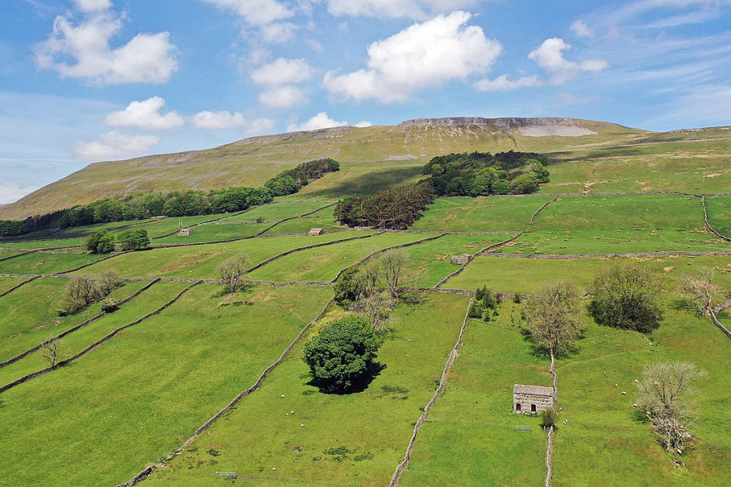 A long hot period has left parts of the Dales tinder dry. Photo: YDNPA