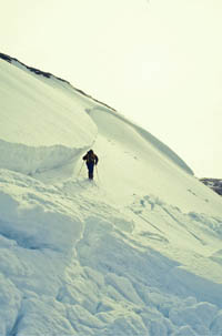 A large slab avalanche in Scotland. Photo: Avalex
