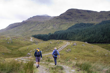 The track into Benmore Glen, with Cruach Ardrain in the distance