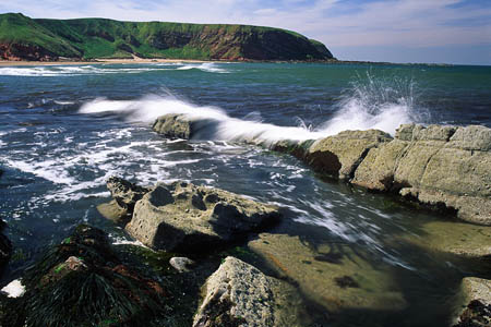 The route of the Berwickshire Coastal Path has dramatic views: Photo: Keith Robeson/Scottish Borders Council