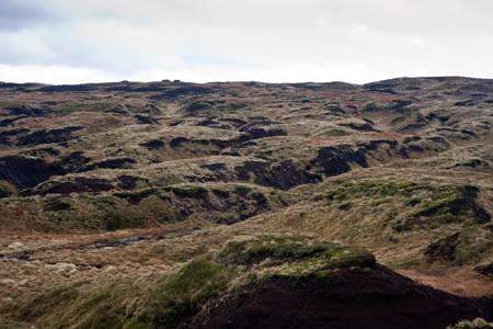 The summit hags and groughs of Bleaklow