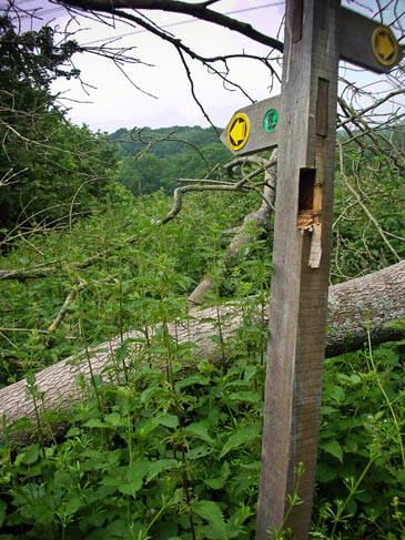 The cuts will lead to more blocked footpaths, Ramblers said
