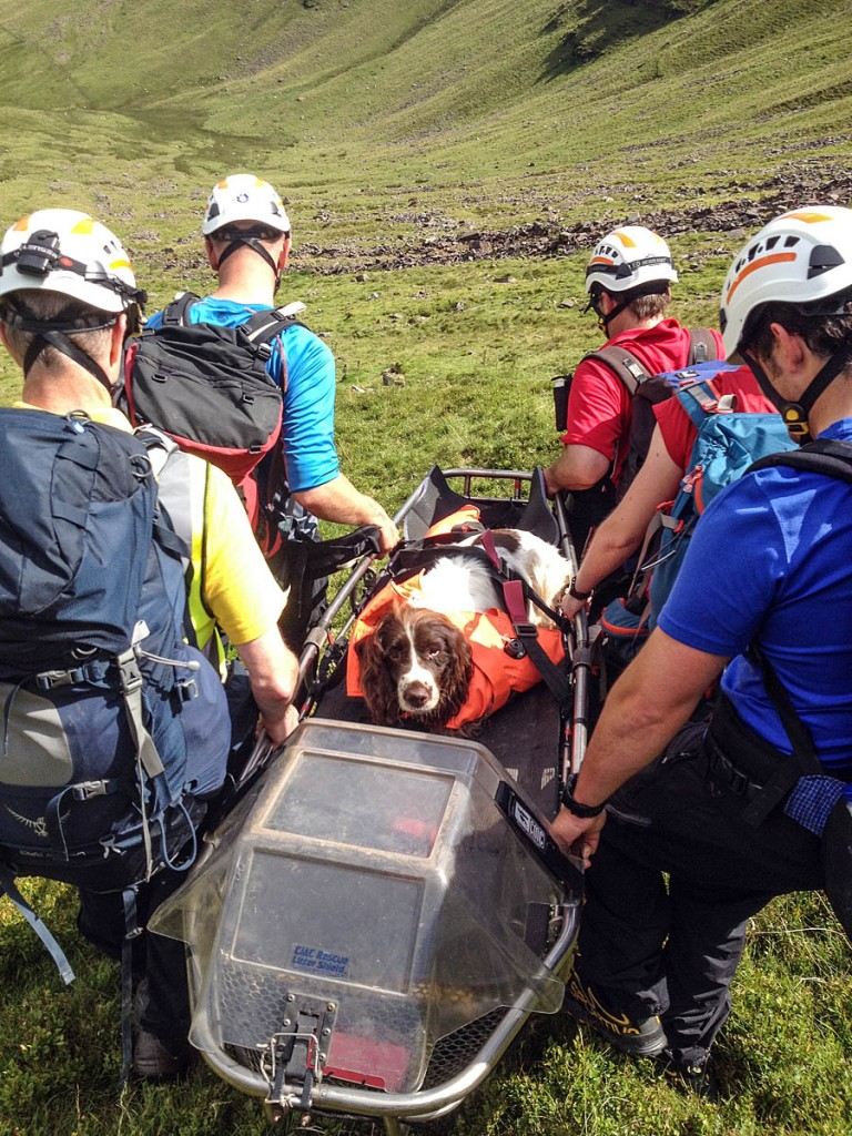Woody is stretchered from Pen y Fan after falling 600ft. Photo: Brecon MRT