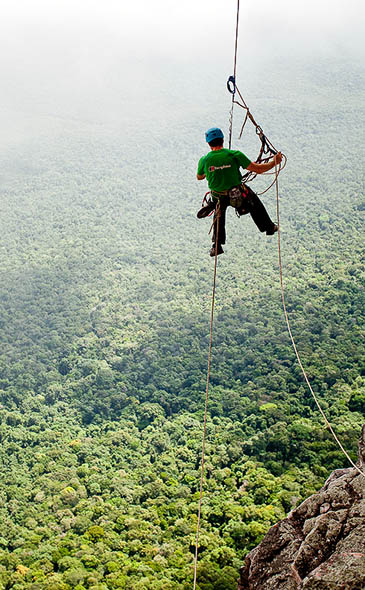 Sean Leary hangs suspended over the rainforest. Photo: Alastair Lee