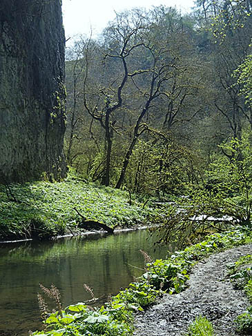 The River Wye at Chee Dale. Photo: Andrew Hill CC-BY-SA-2.0