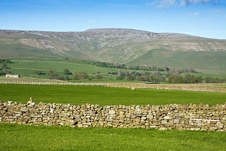 Cross Fell towers above the pastures of the Eden Valley